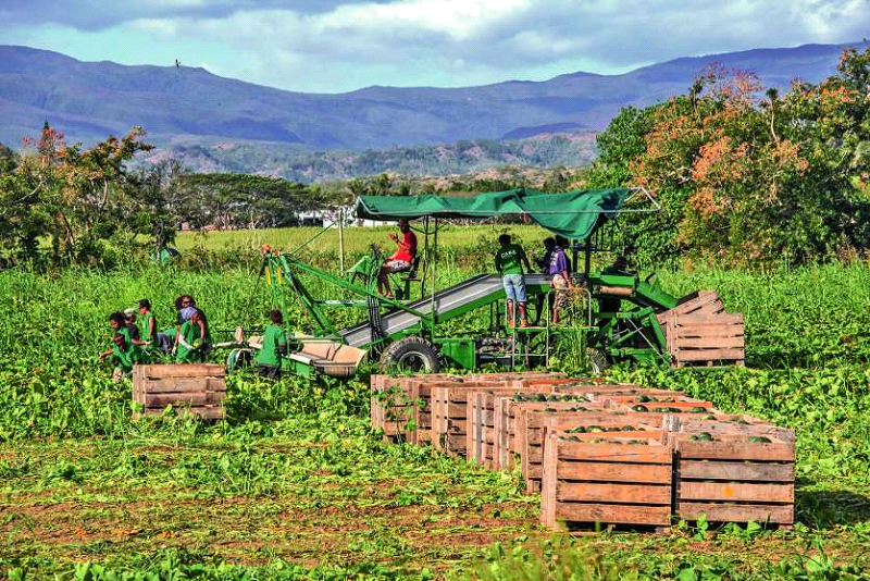 agriculture enjeu préoccupant en Nouvelle-Calédonie Archives LNC